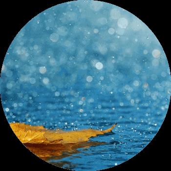 acque-piovane