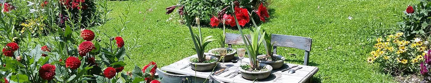 settore-verde-e-giardini